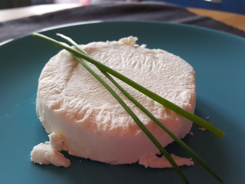 fermented vegan cheese base with chives